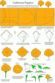 how to make California poppies step by step Easy Origami Rose, Origami And Kirigami, Origami Fish, Diy Origami, Origami Ideas, Origami Folding, Oragami, Origami Flower Bouquet, Roses