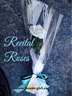 Give an everlasting, eco-chic keepsake rose! Made by hand - petal by petal, a great idea for dance recitals, skating, acting performance and for a special gift!