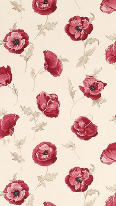 Wallpaper Rosa Vermelha