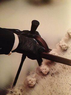 Braids, gloves, reins, crop.  kbchorsesupplies.com