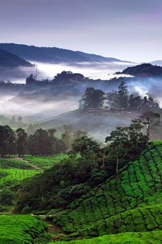 Cameron Highlands, Scotland (by Simon_Long)