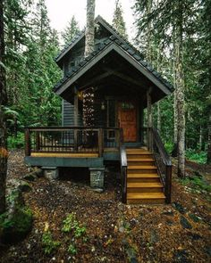 Cabins Daily