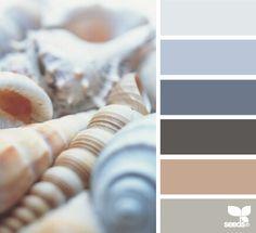 Shell tones - Forgie home redesign