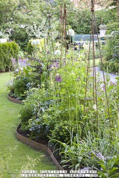 beautiful backyard garden design ideas can for your garden planning 2 - New ideas Backyard Garden Design, Garden Landscaping, Landscaping Design, Garden Trellis, Garden Beds, Back Gardens, Outdoor Gardens, Minimalist Garden, Garden Borders
