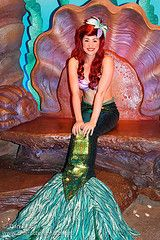 where to find Ariel