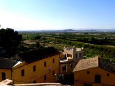 Vistas del Parque Natural del Turia desde el castillo de Ribarroja