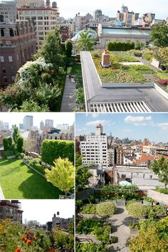 Rooftop Garden. Downtown NY. Designed by  Goode Green.