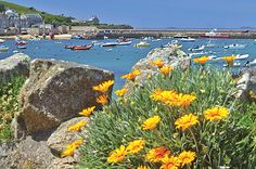 Isles of Scilly- off the coast of Cornwall, England/ Each island has its own unique character, charms, and adventures. /variety of beaches, different eateries, unique activities, unusual flora/ famous Abbey Gardens on Tresco/ from laidback and bohemian, to grand and lush