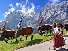 Hier finden Sie schöne Bilder von bayerischem Brauchtum und bayerischer Tracht