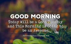 Share The Best Happy, Funny, Tuesday Morning Quotes & Sayings with Beautiful Images. Happy Tuesday Meme, Happy Tuesday Morning, Good Morning Today, Tuesday Motivation Quotes, Morning Motivation, Days Of Week, Life Quotes, Qoutes, Morning Quotes
