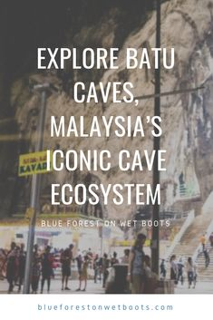 As one of the most recognized tourist attractions in the country, Batu Caves, Malaysia is synonymous with the Petronas Twin Towers in iconic status. Batu Caves, Blue Forest, Natural Wonders, Towers, Travelling, Twin, At Least, How To Get, Explore