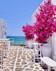 Want to go to Greece but don't know what Islands to visit? Here are the 8 Best Greek Islands to go island hopping! From Santorini to Mykonos, these are best travel tips for honeymooners and couples alike! Greek Islands To Visit, Best Greek Islands, Greece Islands, Cool Places To Visit, Places To Travel, Places To Go, Best Places In Portugal, Paros Island, Santorini Island