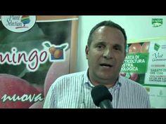 FOGLIE TV - XV edizione della giornata di frutticoltura e mostra pomologica