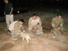 #GreenBeretFoundation  .....  They are big bad Green Berets, until you give them a puppy❤ツ