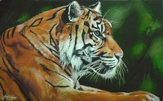 A Tiger painted in acrylic on canvas. Oh, the fur!