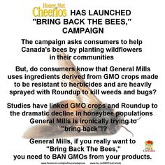 """Honey Nut Cheerios has launched """"Bring Back The Bees,"""" campaign. The campaign asks consumers to help Canada's bees by planting wildflowers in their communi"""