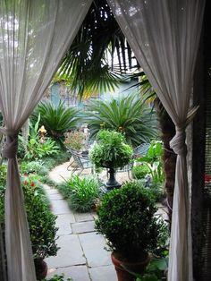 New Orleans garden