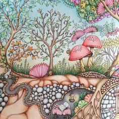 """@johannabasford #johannabasford #mijngeheimetuin #secretgarden #florestaencantada #hetbetoverdewoud #coloringforadults #kleurenvoorvolwassenen"""