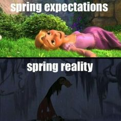 Disney Memes Do It Better    Cambio Photo Gallery (happy SPRING to all)