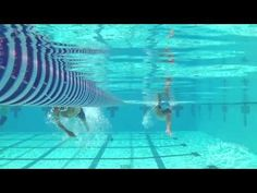 Advice from Total Immersion founder, Terry Laughlin.  Terry's presentation at USA Triathlon's NW Regional Meeting in Boise focuses on perpetual motion freestyle for long distance swimmers.