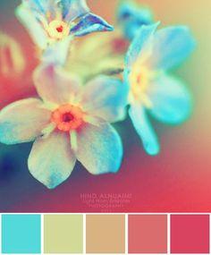 turquoise, jaune, orange, rouge, été, vives
