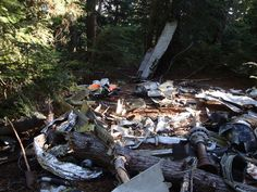 Plane crash wreckage on Mount Strachan at Cypress Mountain in West Vancouver. Just one of 15 unusual hikes near Vancouver. Vancouver Hiking, Walking Meditation, Cheap Holiday, Photography Basics, Mountain Hiking, We Are The World, Canadian Rockies, Abandoned Places, Hiking Trails