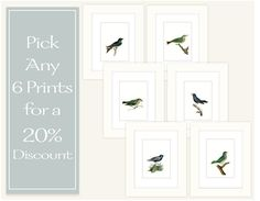 Any 6 Prints for a 20% Discount by paperwords11 on Etsy