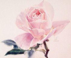 """""""#LaFe  Мастер-класс с тайским акварелистом, изображающим такие прекрасные розы состоится в Bratec Lis School 23, 24 и 25 октября. #акварель #watercolor…"""""""