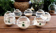 Ideas for Modern Design With Aquarium Décor
