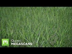 Creating Grass with Color Variation in UE4 - YouTube
