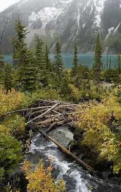 upper joffre lake by millardog, via Flickr #whistler