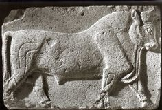 Hittite, bull, Ankara, 700 BC, Museum of Anatolian Civilisations, Ankara
