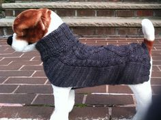 Custom made dog sweater hand knit in a cable pattern by knitincolor on Etsy https://www.etsy.com/listing/210153298/custom-made-dog-sweater-hand-knit-in-a