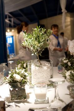 centre piece of glass cubes filled with small olive trees and white stones.