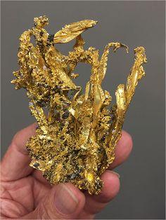 Minerals And Gemstones, Crystals Minerals, Rocks And Minerals, Stones And Crystals, Gold Reserve, Gold Bullion, Rare Gems, Summer Street, Mineral Stone