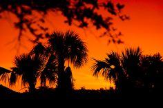 Sunset photo taken at AKV Kidani Village Disney Vacation Club, Disney Vacations, Kidani Village, Dreams Do Come True, Sunset Photos, Celestial, Outdoor, Outdoors, Outdoor Games