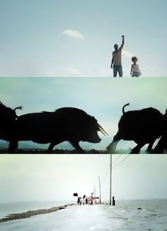 BEASTS OF THE SOUTHERN WILD, Benh Zeitlin (2013)