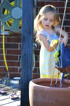 My little garden helper.  Lesson #1: Water the plants- Check. Lesson #2: Conserve water- work in progress.   Photo by L. Daenzer.