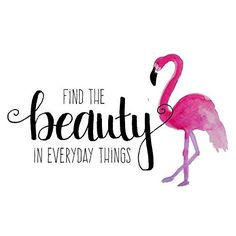 Flamingo Print Girl Quotes Find the Beauty Pink and Black Decor Flamingo Art Quotes for Girls Bathroom Wall Art Dorm Room Art Pink Flamingo Flamingo Painting, Flamingo Art, Pink Flamingos, Flamingo Drawings, Painting Quotes, Painting Prints, Watercolor Painting, Wall Decor Quotes, Quote Wall