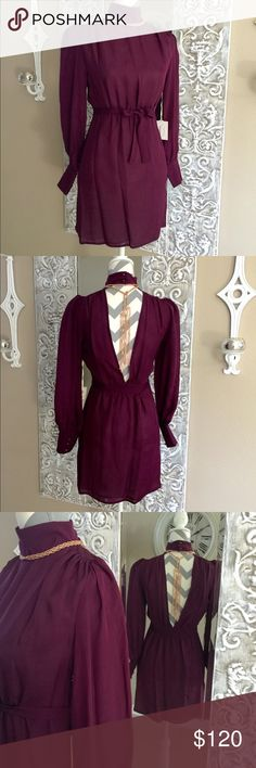 """New Silk Nicole Dress 2x HP This gorgeous Plum colored dress is one of a kind. High neck in front and cut all the way to the waist in back. This dress is made to wear in the front also, if you dare! Fully lined and ties at the waist, front or back! Bust measures 17"""" across laying flat & waist to hem is 18"""" or shoulder to hem is 31"""". Sleeves are 23.5"""". 100% silk, dry clean only. NWT Scarlet & O Dresses"""