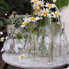 Morning 🔆 Happy Monday 🌸Daisies for you 🌸  .  .  .  .  .  .  .  .  .  #szczyptasmaq#myhome#mygarden#homedecor#design#scandinavianstyle#scandinaviandesign#stokrotki#daisies#flowerstagram#click_vision#still_life_gallery#tv_simplicity#morningstories#vscocam#vscopl#mysimplelife#flowers#flowerlovers#naturelovers#goodvibes