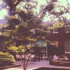 The Bluecoat garden, Liverpool Listed Building, Old Building, Liverpool Life, King John, I Cool, Dolores Park, Landscapes, Places To Visit, Trees