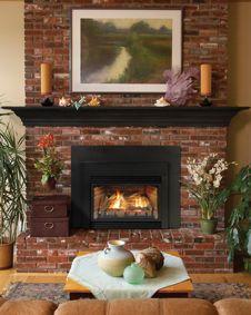 Gas Fireplace Inserts Brick                              …