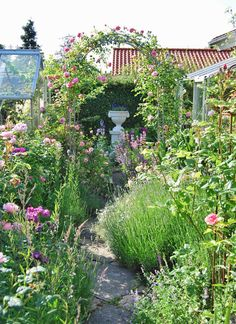 Garden path to the small greenhouses