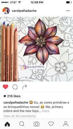 Colorindo flores com cores primárias                                                                                                                                                                                 More