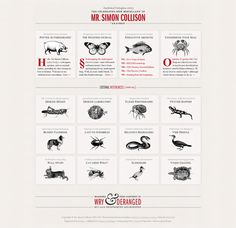 Brainy Restraint   Simon Collison - Awesome Blog Designs