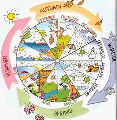 Englisch in der Grundschule: months and seasons Kids English, English Words, English Lessons, Learn English, Seasons Of The Year, Months In A Year, Four Seasons, Year 2, Seasons Months