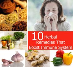 Top 10 Herbal Remedies That Boost Immune System | Heart Craft