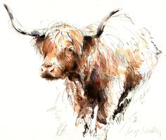 "Saatchi Online Artist: Lucy Newton; Colored Pencils, Drawing ""Highland Cow"""