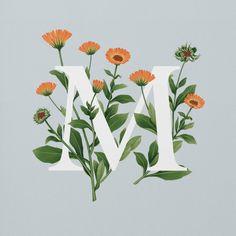 英国插画师Charlotte<wbr>Day迷人花卉字母设计